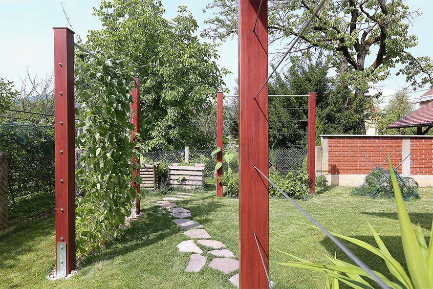 Pozneje: elementi uporabnosti in dekoracije. Jeklenice po katerih plezajo rastline za senco ali za pridelavo hrane.