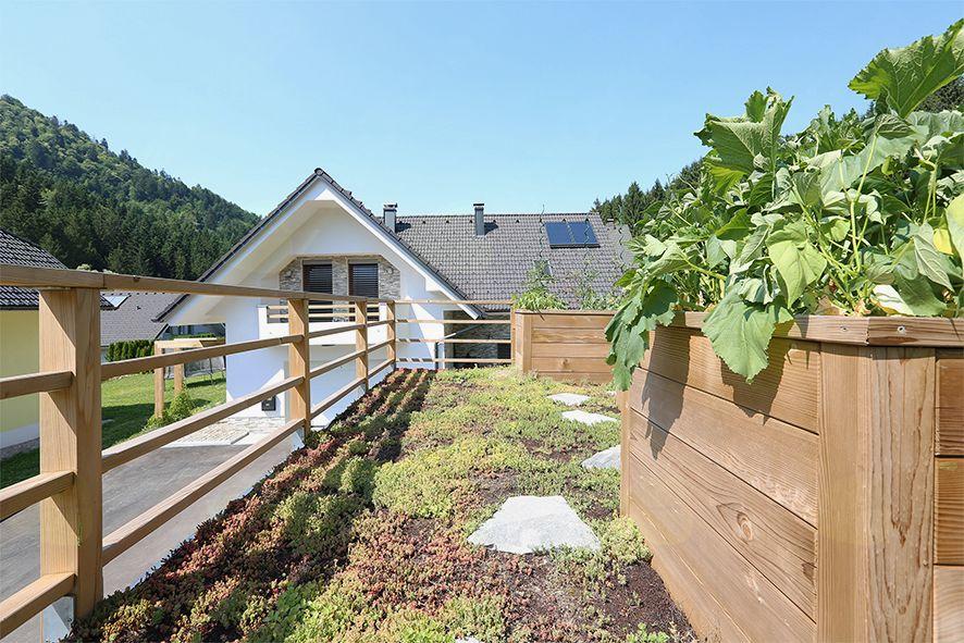 Pozneje: Prej in pozneje: zeleno površino, ki smo jo z gradbenim posegom vzeli travniku, smo nadomestili z gomoljčno in zelenjavno streho ter betonsko steno zazelenili z bršljanom.