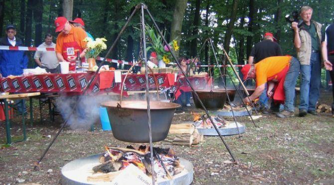 Kuhanje štajerske kisle žüpe
