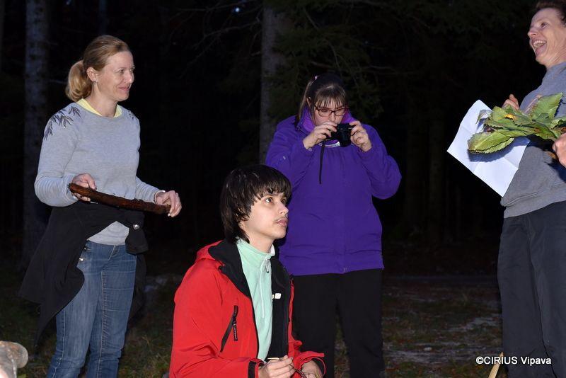 Večer v gozdu na jesenskem Nanosu