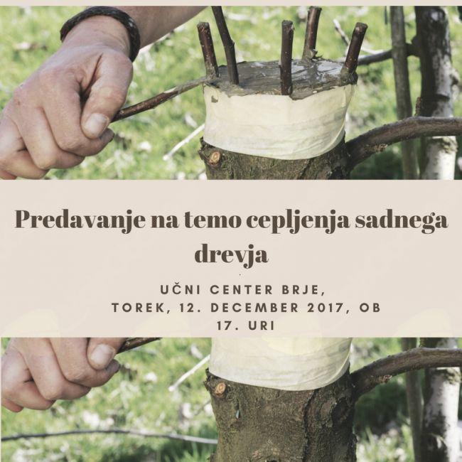 Predavanje na temo cepljenja sadnega drevja