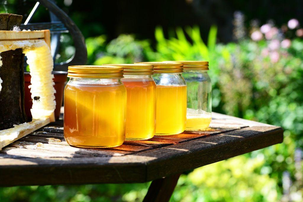 Pot od cveta do medu