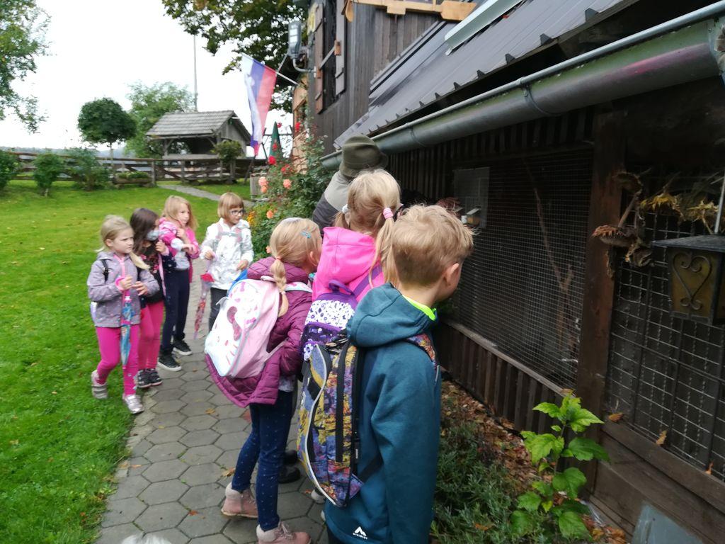 Mladi čebelarji obiskali planšarijo Lipovec