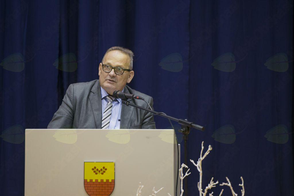 Rajko Žagar, predsednik projektnega sveta ZDIS