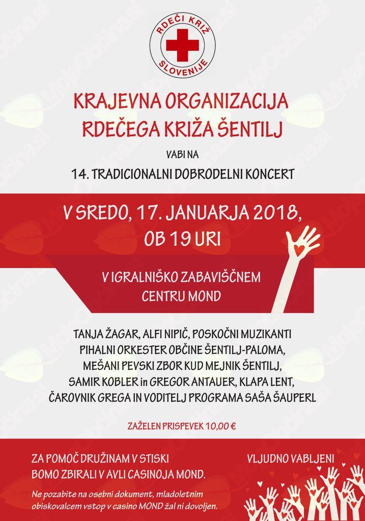 14. tradicionalni koncert za pomoč družinam v stiski
