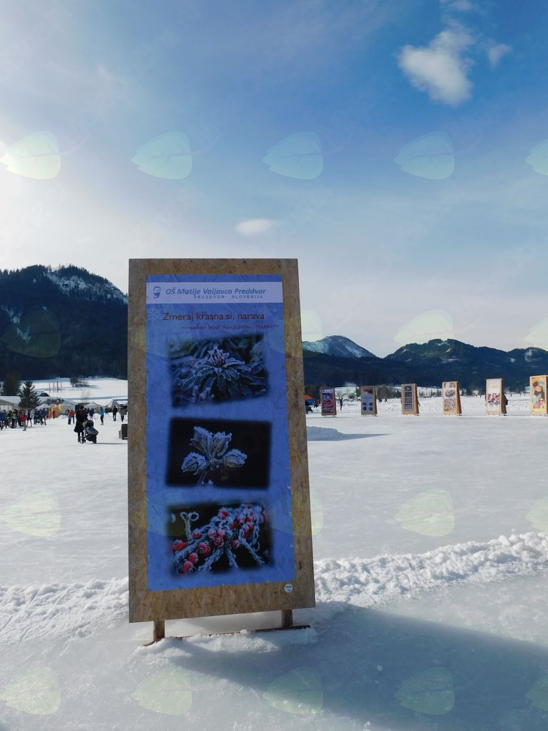 Slike na ledu jezera Weissensee