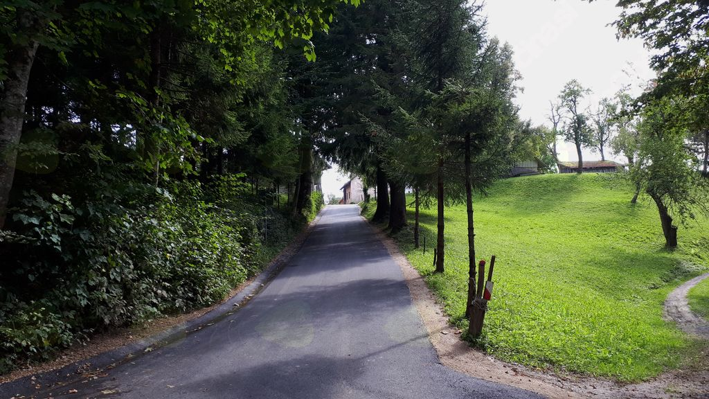 Asfalitirali odsek ceste v Bašlju