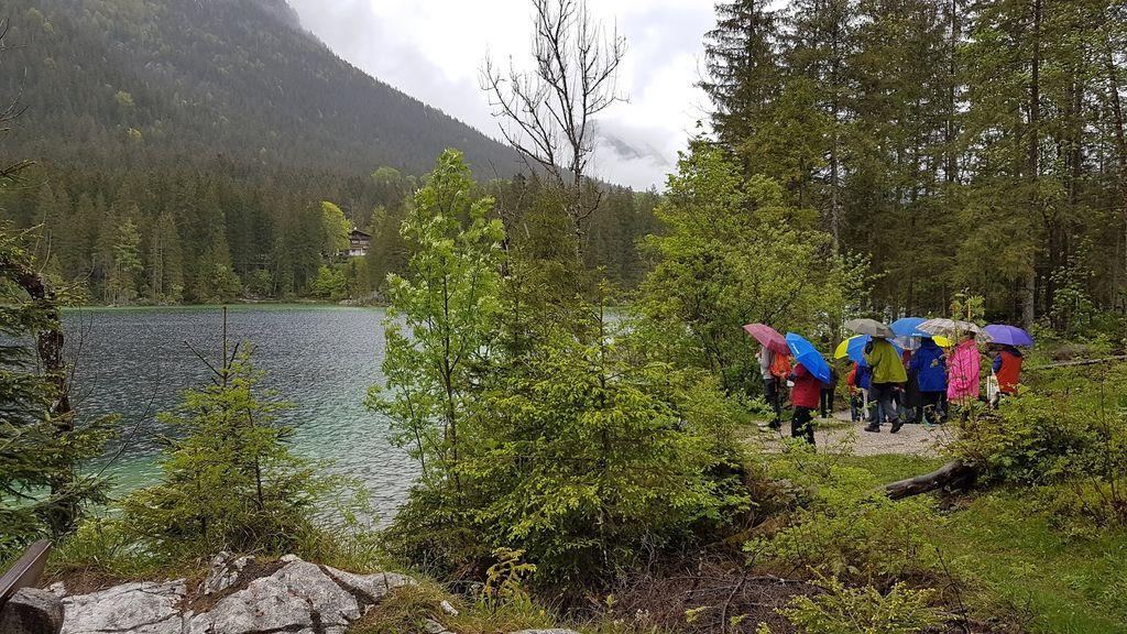 Sprehajalna pot ob jezeru