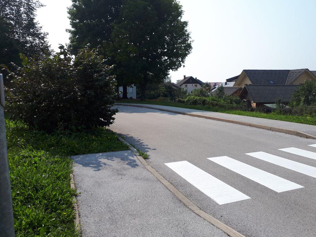 Grm, ki je zmanjševal varnost prečkanja ceste, je že odstranjen