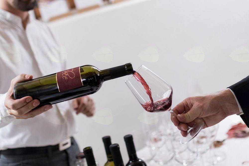 Študentski festival vin Visoke šole za vinogradništvo in vinarstvo Univerze v Novi Gorici