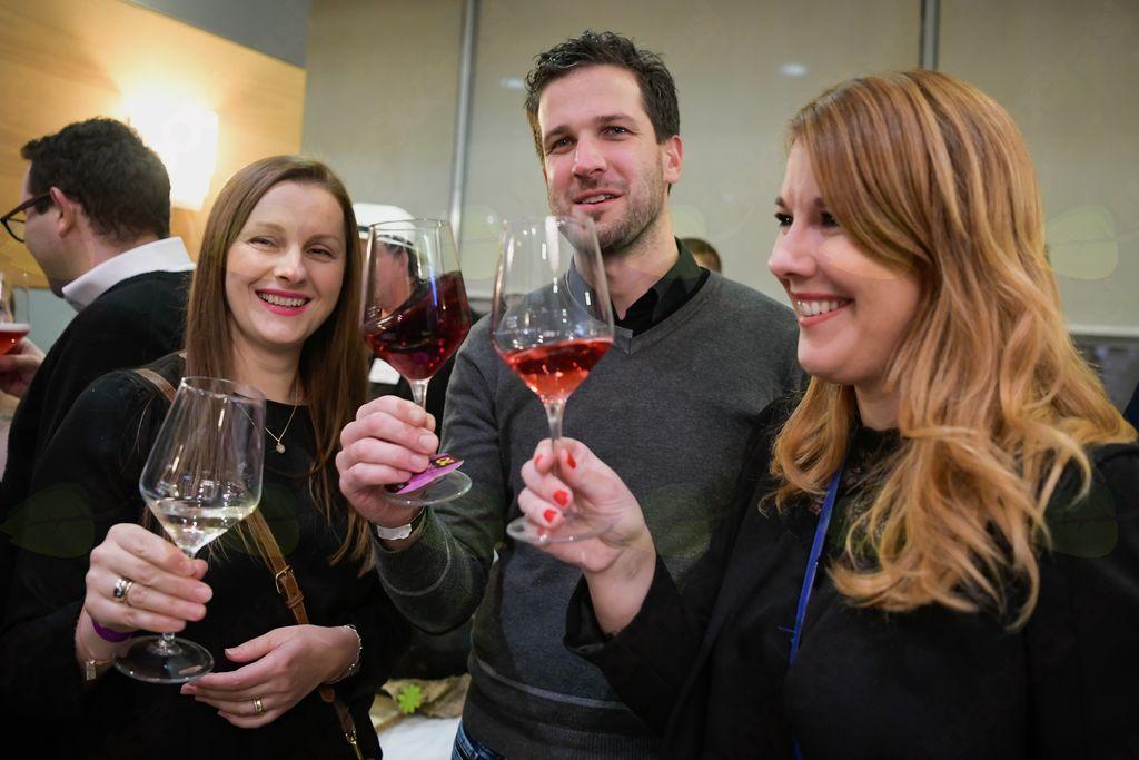 Vipavska dolina zvezda Slovenskega festivala vin