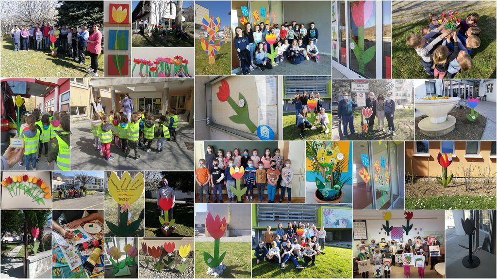 Ajdovščina mesto tulipanov za kratek čas