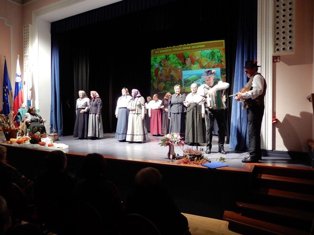 Folklorna skupina Brežice