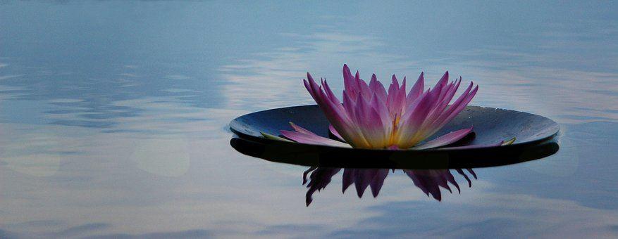 Meditacije Bled