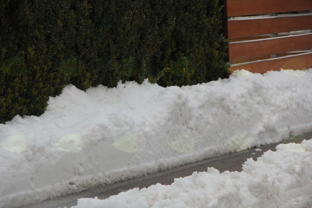 Pohvala zimski službi