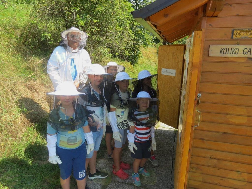 20 kilogramov medu iz šolskega čebelnjaka