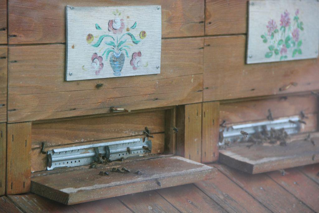 Tradicionalno srečanje čebelarjev ob koncu sezone