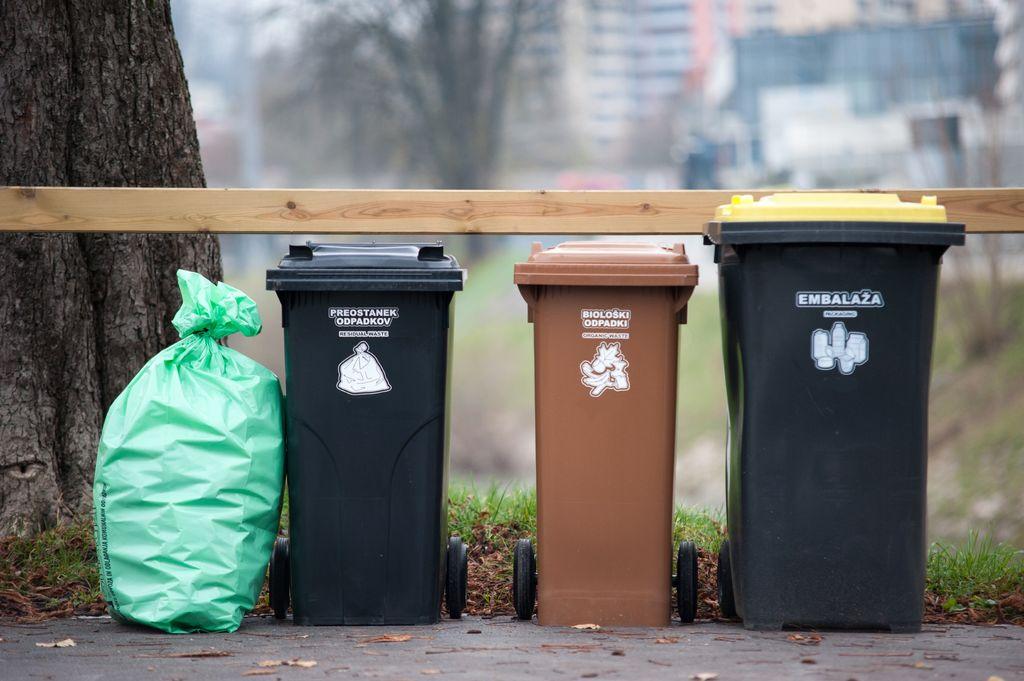 Primer urejenega odlaganja smeti v zabojnikih in standardiziranih vrečah.