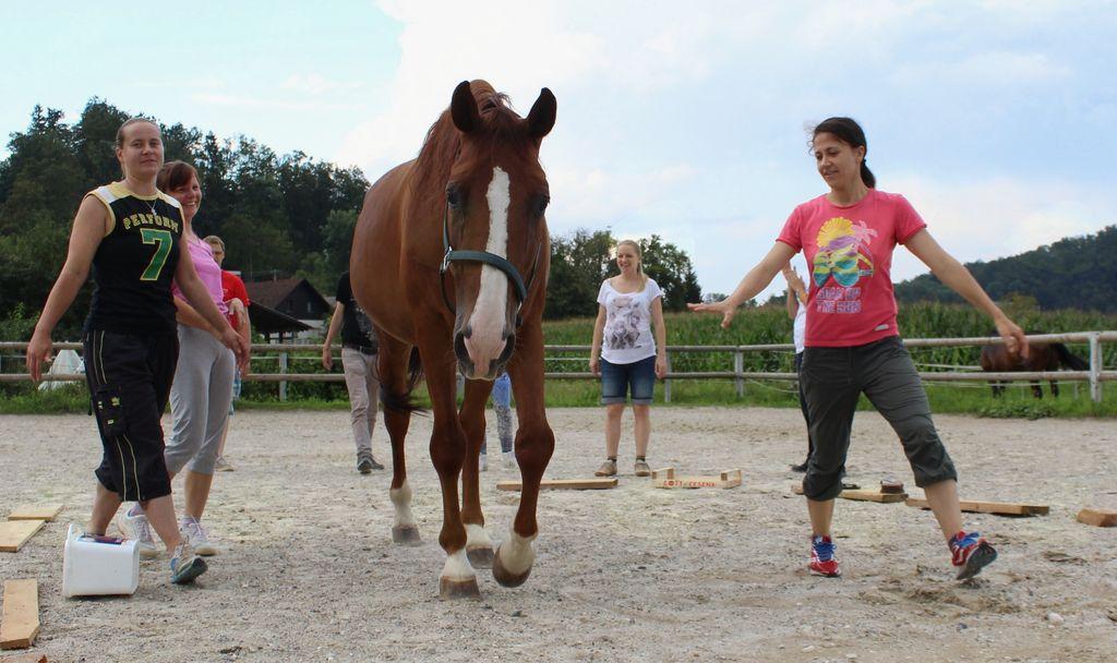 Lukasi aktivnosti s konji za vse generacije v Vnanjih Goricah