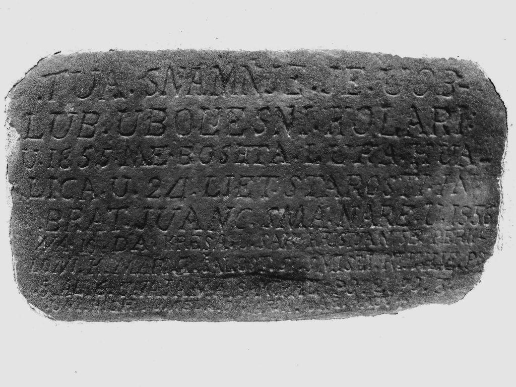 Zapis na kužnem znamenju (foto: R. Devetak)