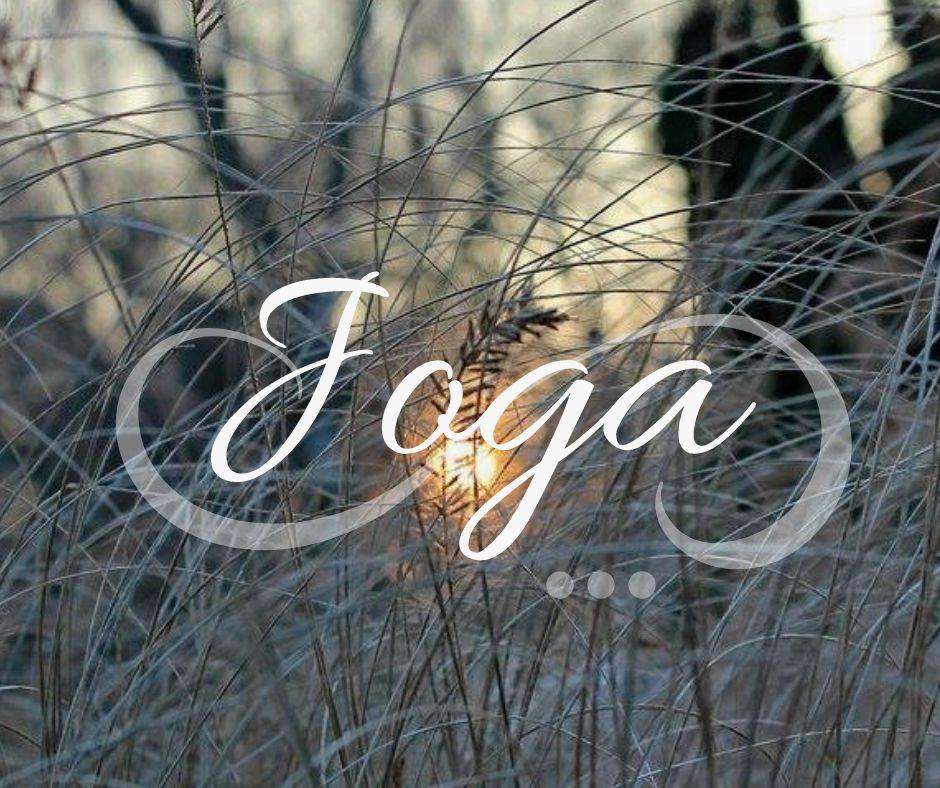 JOGA TEČAJI V LOGATCU: Yin joga, Hatha joga, Gong joga in Joga za otroke