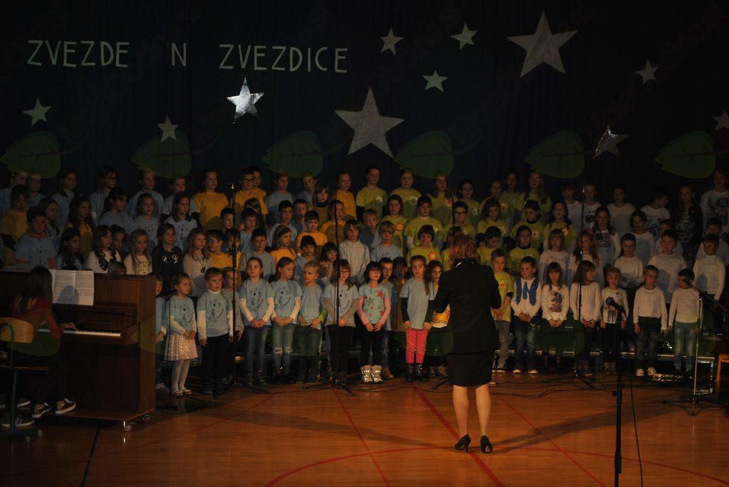Naše zvezde in zvezdice 2017