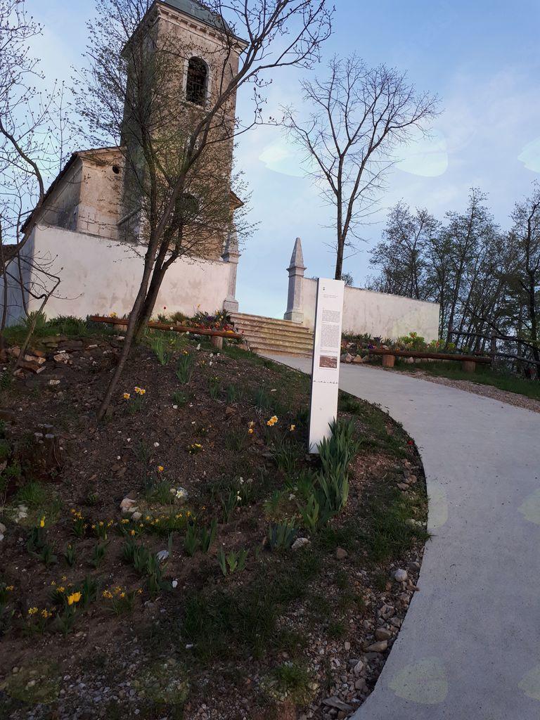 Pomladna zasaditev nad Gočami