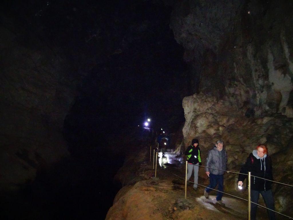 V Planinski jami