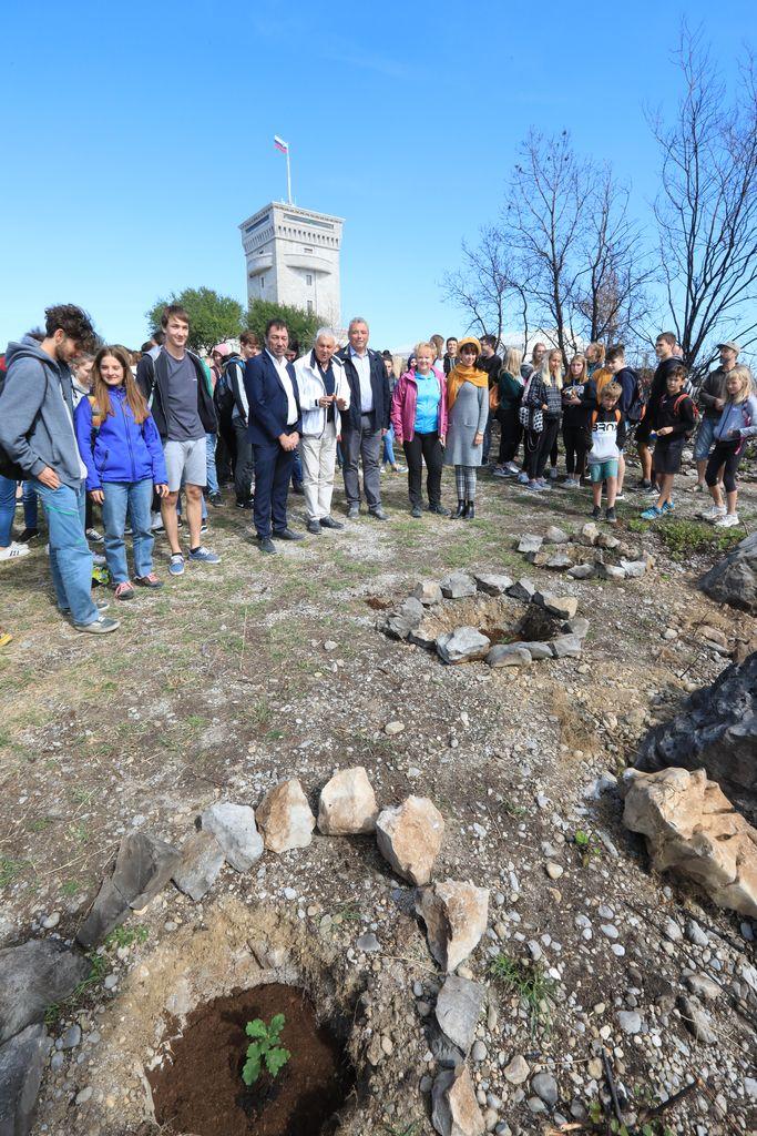 """""""DREVO ZA CERJE"""" - kampanja za ozelenitev Parka miru na Cerju"""