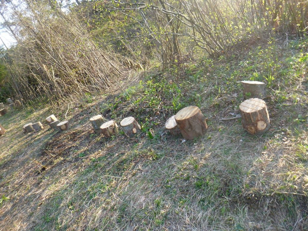 Vandalizem v gozdni igralnici vrtca Kurirček Logatec