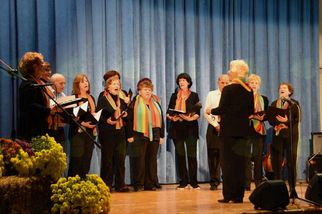 Mešani pevski zbor DU Vrhnika