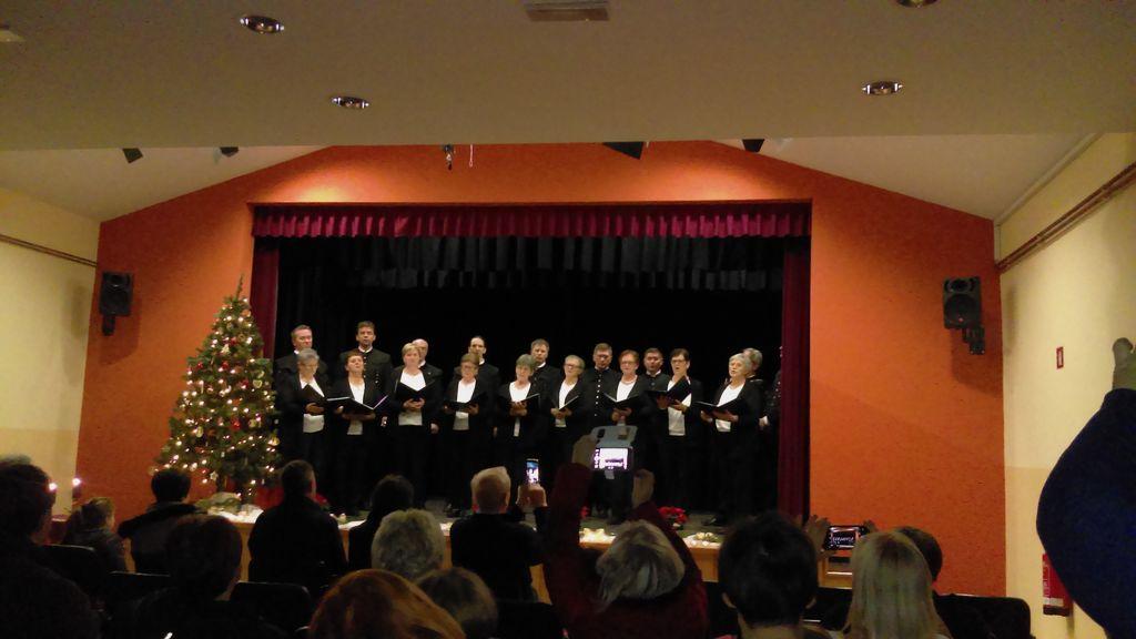 Božični koncert v Žižkih