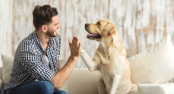 Vpliv živali na razvoj osebnosti