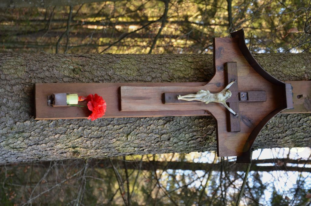 Prvo srečanje s Križanim ob bajerčku