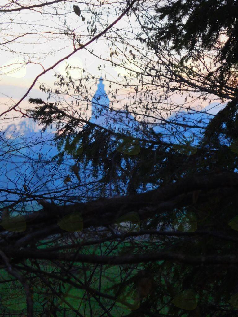Komendska cerkev skozi veje dreves.