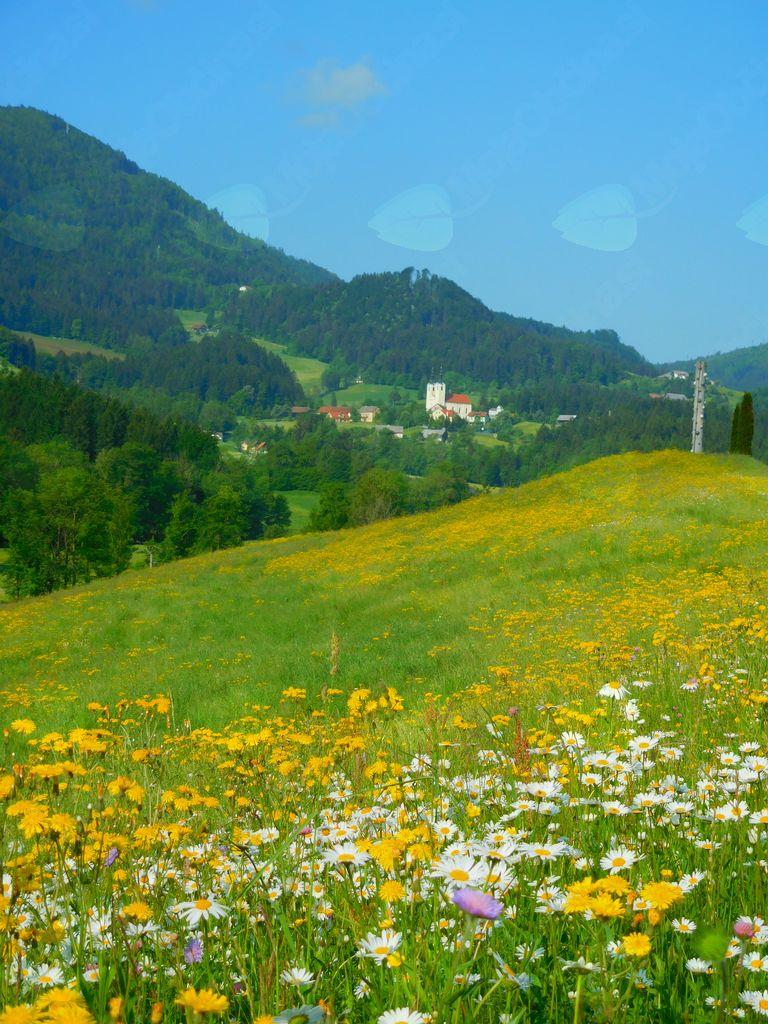 Slovenija temelji na krščanskem izročilu