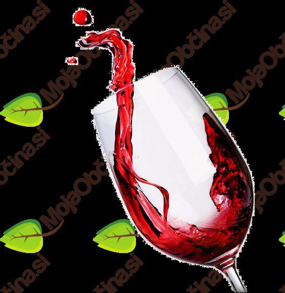 Degustacija vin Čarga