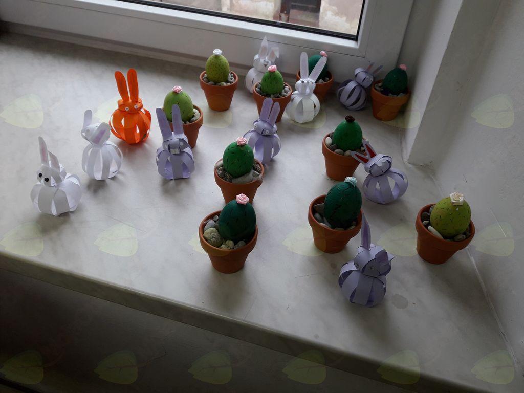 Zajčki in kaktusi