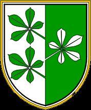 1.redna seja Krajevnega odbora Apače