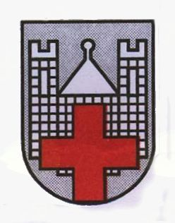 Razpis za delovno mesto DIREKTOR Zdravstvenega doma Slovenj Gradec