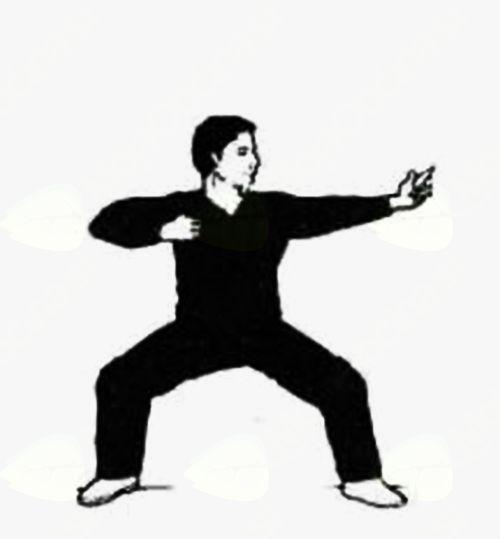 Qi Gong – začetno učenje in vadba