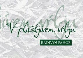 Pogovor z Radivojem Pahorjem na Slapu pri Vipavi
