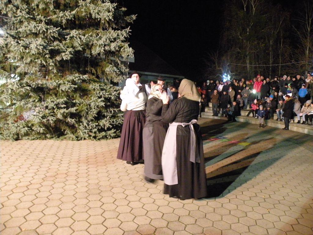 Postavitev božičnega drevesa 2019