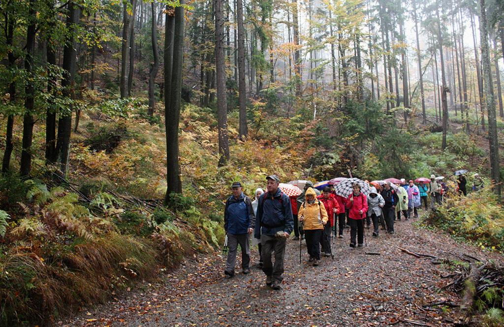 Skozi jesensko obarvan gozd smo se po Razgledni poti spuščali v Sovodenj