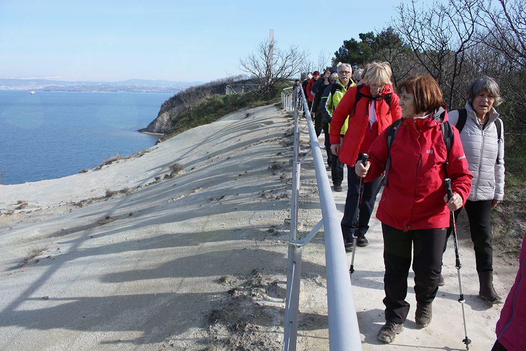 Steza do Strunjanskega zaliva je skrbno ograjena