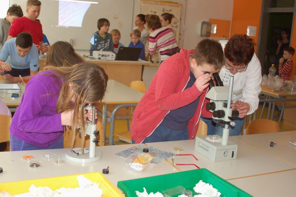 Delavnica mikroskopiranje