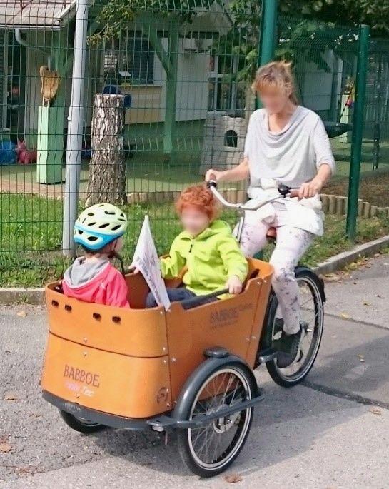 Vizija trajne mobilnosti Borovnica 2030