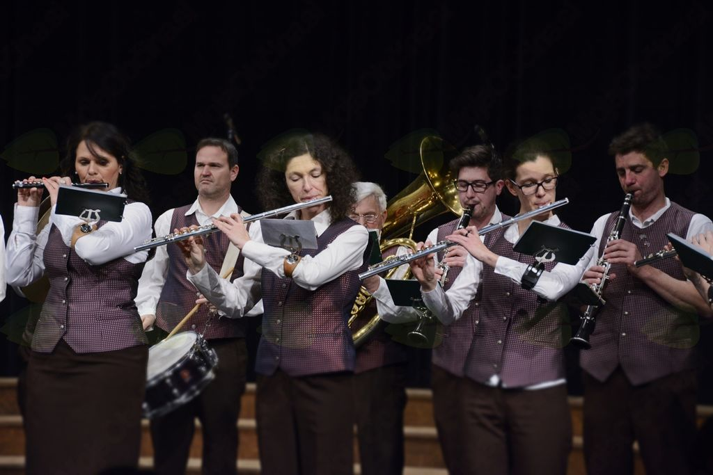 Pihalni orkester Vrhnika