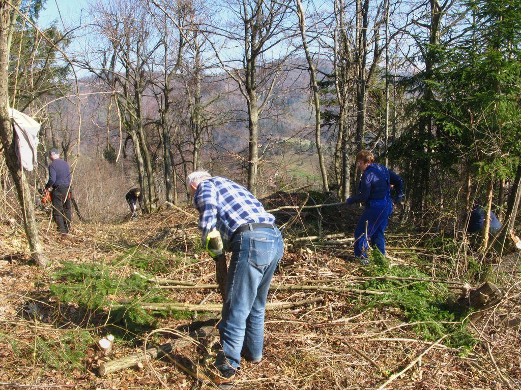 Na delovni akciji čiščenja Ajdovskega zidu