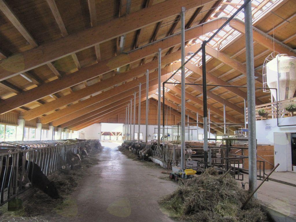 Kmetija Pečečnik